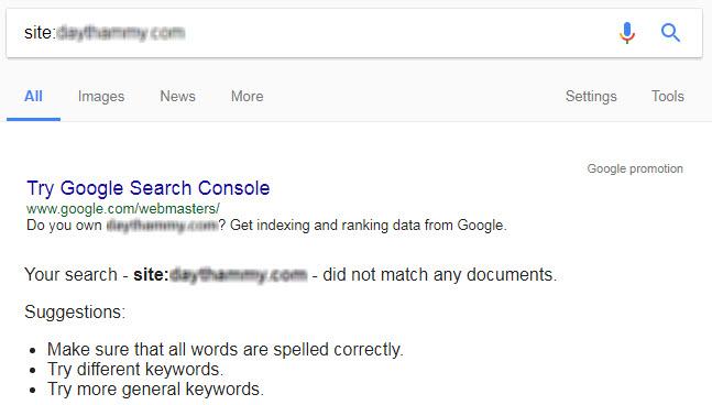 Nhập vào ô tìm kiếm từ khoá sau: site:tên miền website của bạn