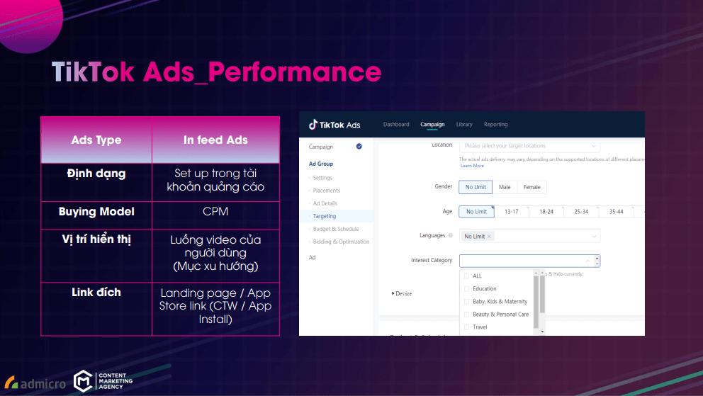 TikTok Ads_Performance