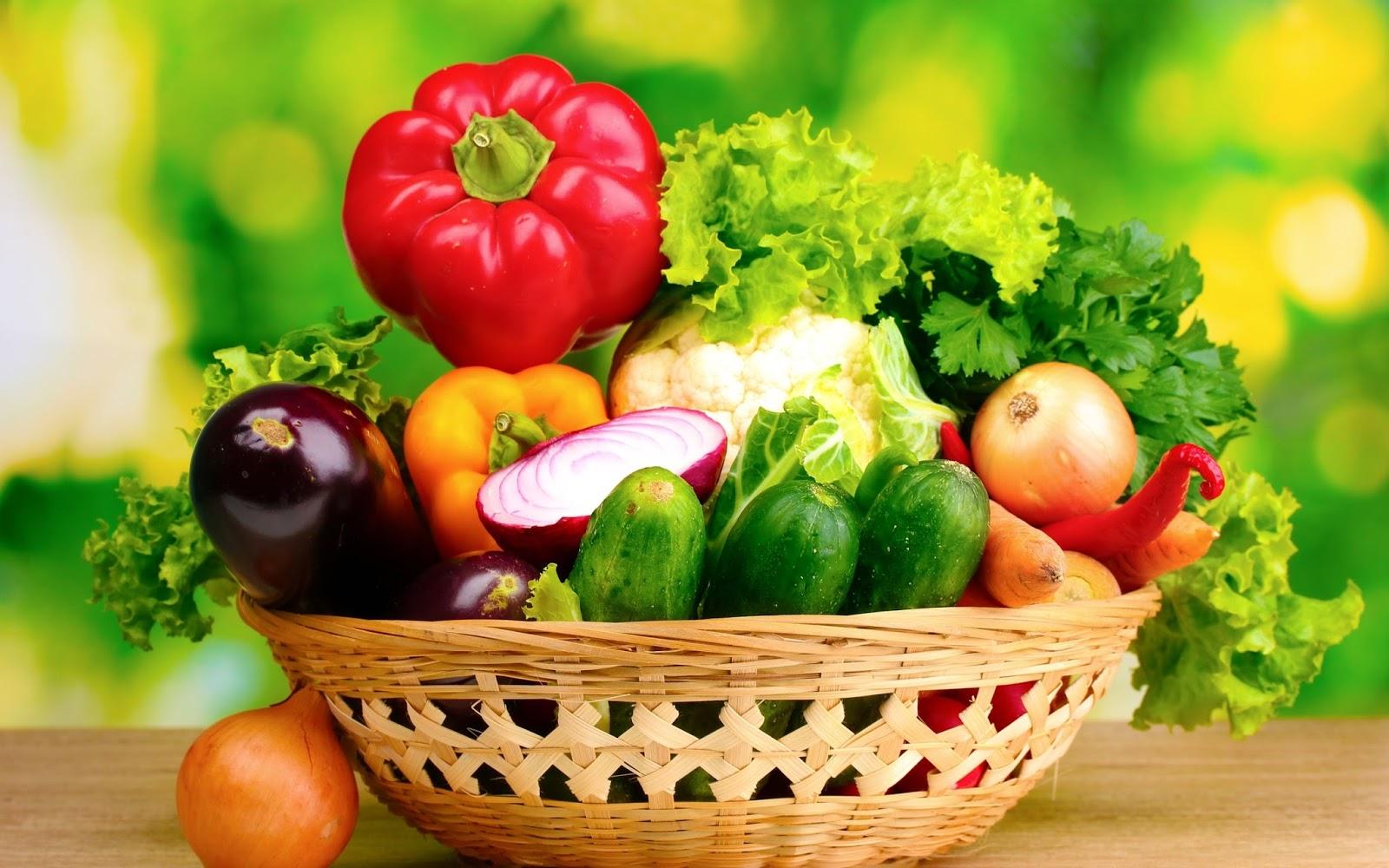 Hướng dẫn kinh doanh thực phẩm sạch hiệu quả